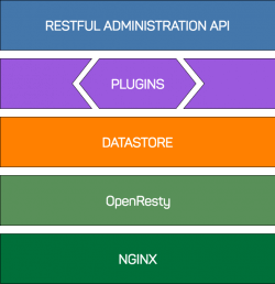 api management kong architecture