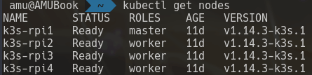 Kubernetes cluster running on Raspberry Pis